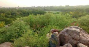 Parthasarthy-rocks_jnu