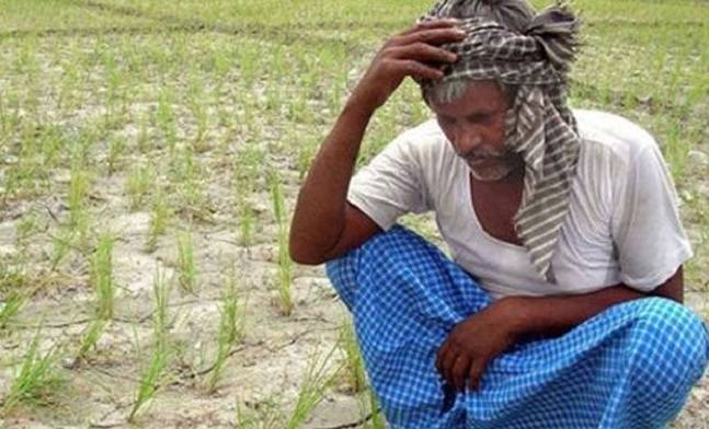 farmer-suicide_moss_060717064340
